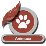 Animaux - LLD